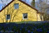Māja Ventspils novada, 140 m², 1 st., 5 ist.. - MM.LV